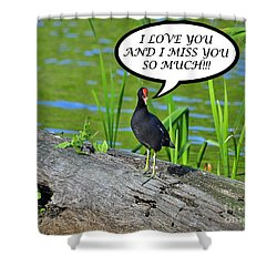Moorhen Miss You Card Shower Curtain by Al Powell Photography USA