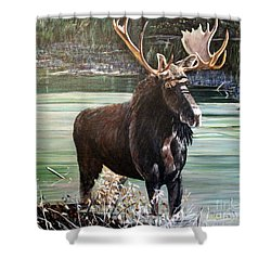 Moose County Shower Curtain