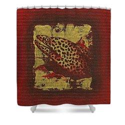 Moray Eel Shower Curtain