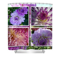 More Dahlias Shower Curtain by Susan Garren