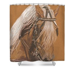 More From Fer A Cheval Shower Curtain