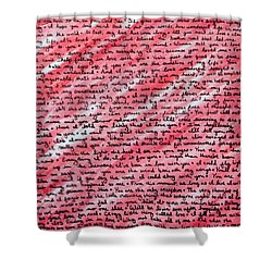 Shower Curtain featuring the painting More Than Words by Jean Haynes