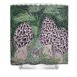 Shower Curtain featuring the painting Morel Mushrooms by Kathy Marrs Chandler
