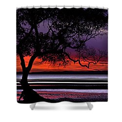 Moreton Bay View Shower Curtain