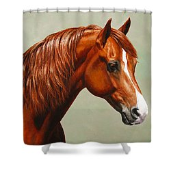 Morgan Horse - Flame Shower Curtain by Crista Forest