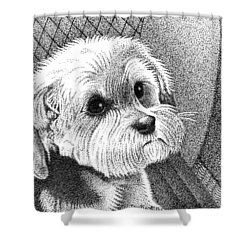 Morkie Shower Curtain