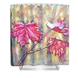 Morning After Autumn Rain Shower Curtain by Shana Rowe Jackson