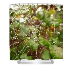 Shower Curtain featuring the photograph Morning Dew by Vicki Spindler