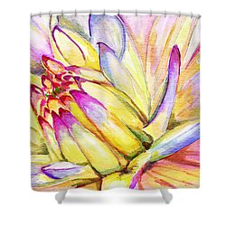 Morning Flower Shower Curtain by Janet Garcia