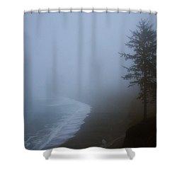 Morning Fog At Agate Beach Shower Curtain by Robert Woodward