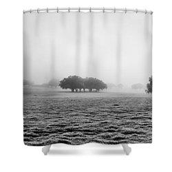 Morning Fog Shower Curtain by Howard Salmon