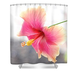 Morning Hibiscus In Gentle Light - Square Macro Shower Curtain