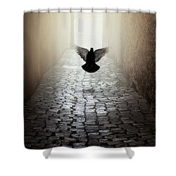 Morning Impression With A Dove Shower Curtain by Jaroslaw Blaminsky