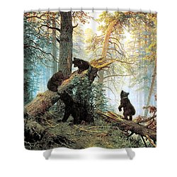 Morning In A Pine Forest Shower Curtain