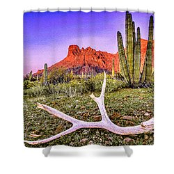 Morning In Organ Pipe Cactus National Monument Shower Curtain by Bob and Nadine Johnston