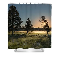 Morning Light In Yellowstone Shower Curtain by Sandra Bronstein