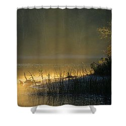 Shower Curtain featuring the photograph Morning Mist by Dianne Cowen