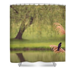 Shower Curtain featuring the photograph Morning Mood by Rima Biswas