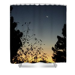 Morning Moonshine Shower Curtain by Carla Carson