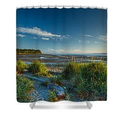 Morning On The Beach Shower Curtain by Randy Hall