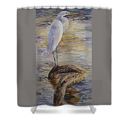 Morning Perch-egret Shower Curtain