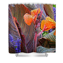 Shower Curtain featuring the photograph Morning Rain by Joseph Yarbrough
