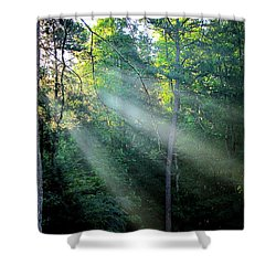 Morning Rays Shower Curtain by Greg Simmons