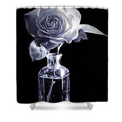 Morning Rose Cyan Shower Curtain
