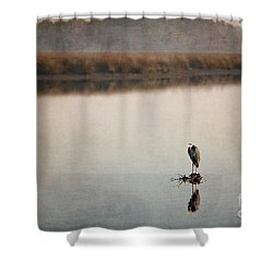 Morning Solitude Shower Curtain by Joan McCool