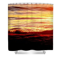 Morning Splash Shower Curtain by Karen Wiles