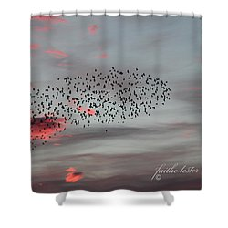 Morning Stretch Iv Shower Curtain