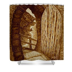 Shower Curtain featuring the painting Morning Walk On The Beach Original Coffee Painting by Georgeta Blanaru