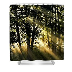 Morning Warmth Shower Curtain