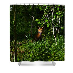 Morning Watch Shower Curtain