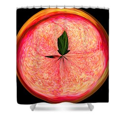 Morphed Art Globe 23 Shower Curtain by Rhonda Barrett