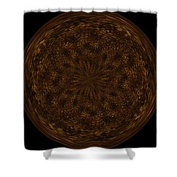 Morphed Art Globe 32 Shower Curtain by Rhonda Barrett