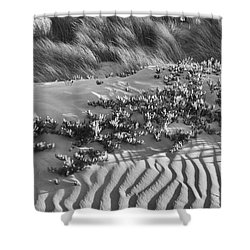 Morro Beach Textures Bw Shower Curtain