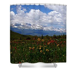 Mosquito Sunflowers Shower Curtain by Jeremy Rhoades