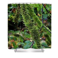 Moss Beauty Shower Curtain by Jeanette C Landstrom