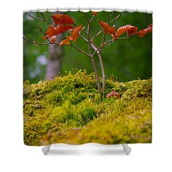 Moss Close-up With A Small Branch With Red Leafs Shower Curtain