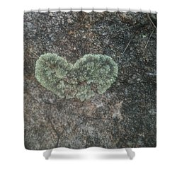 Moss Heart  Shower Curtain