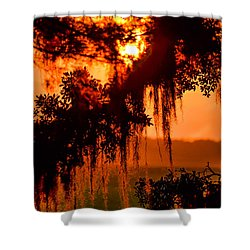 Moss Meets Sun  Shower Curtain by Mary Ward