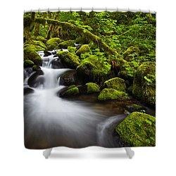 Mossy Arch Cascade Shower Curtain by Darren  White
