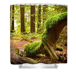 Mossy Creature Shower Curtain