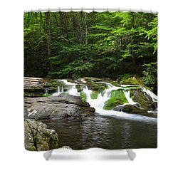 Mossy Falls Shower Curtain by Frozen in Time Fine Art Photography