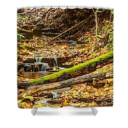 Mossy Log And Stream Shower Curtain