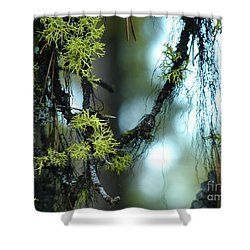 Mossy Playground Shower Curtain by Meghan at FireBonnet Art