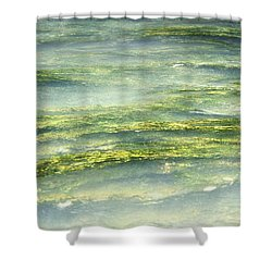 Mossy Tranquility Shower Curtain