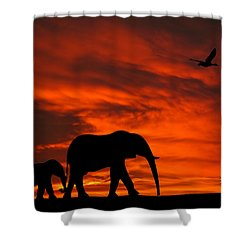 Mother And Baby Elephants Sunset Silhouette Series Shower Curtain by David Dehner