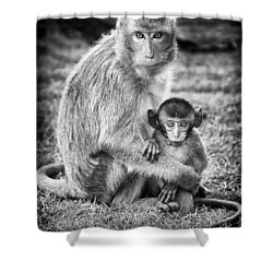 Mother And Baby Monkey Black And White Shower Curtain by Adam Romanowicz